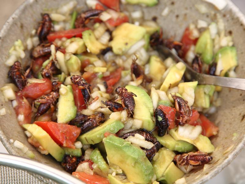inago salad