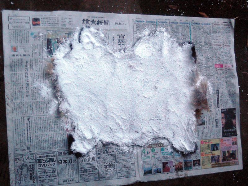 毛皮に焼きミョウバンと塩を塗りこんだ状態