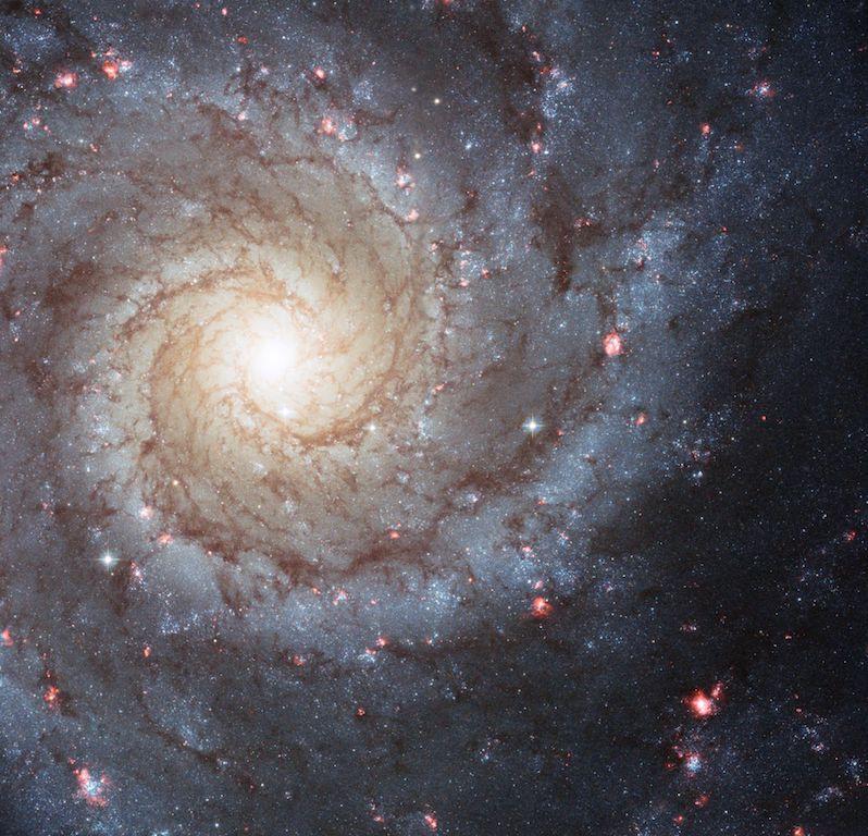 銀河を切り裂く謎の黒い傷口…その正体は渦巻き銀河のガスとチリ ...