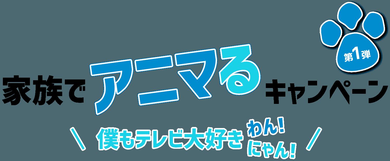 家族でアニマるキャンペーン 第1弾 僕もテレビ大好きわん!にゃん!